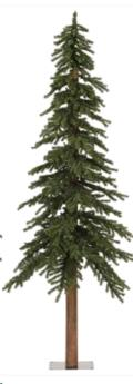 Where to rent TREE 7FT NATURAL ALPINE CHRISTMAS TREE in Cornelius NC