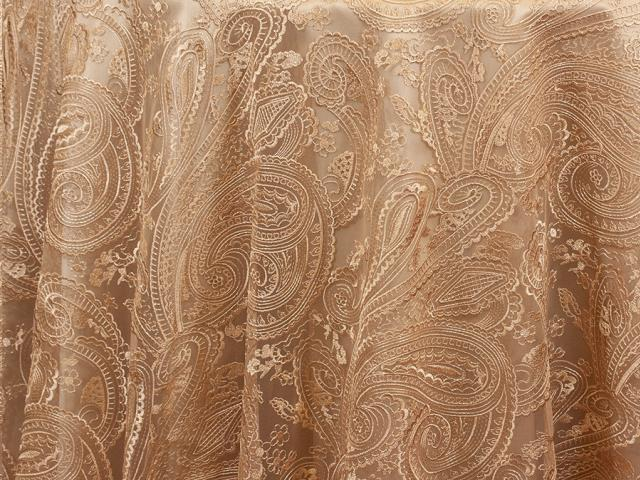 Where to find PAISLEY LACE CHAMPAGNE in Cornelius