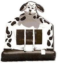 Where to find INFLATABLE DALMATIAN 13X13 in Cornelius