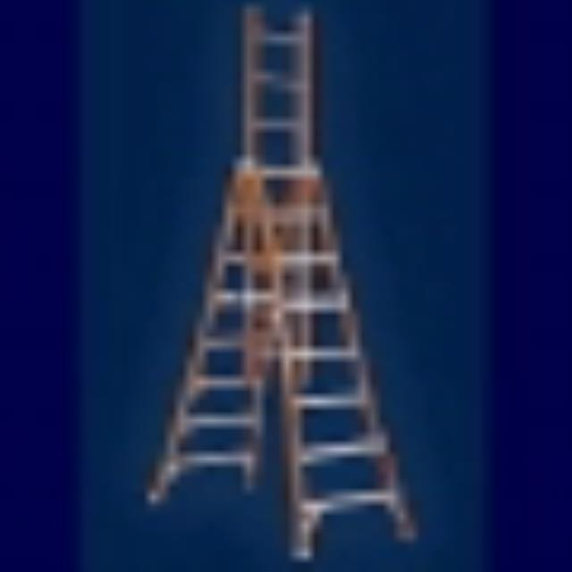 Where to find 19 ft. A-frame Ladder  wood in Cornelius